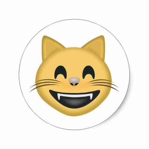 Grinning Cat Face With Smiling Eyes Emoji Classic Round Sticker