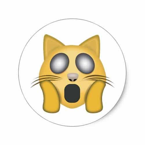 Weary Cat Face Emoji Classic Round Sticker
